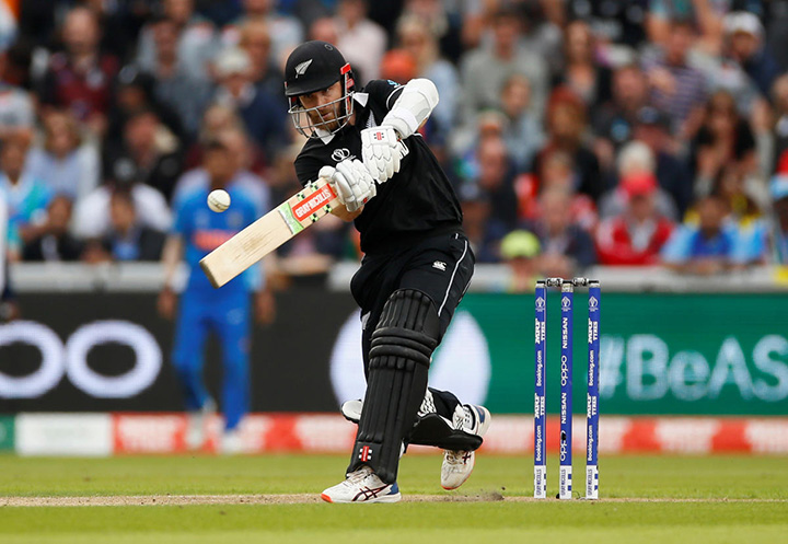 New Zealand perrenial under dogs in tournaments